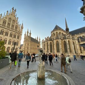 ベルギー・ルーベンへの出張とブリュッセル観光