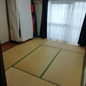 賃貸ぐらしの畳の劣化問題をさくっと解決!