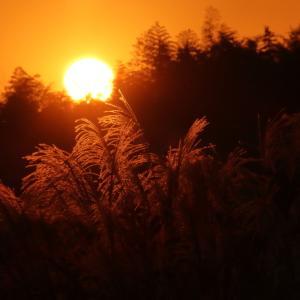 秋の夕景。