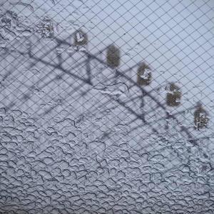 雨の観覧車。