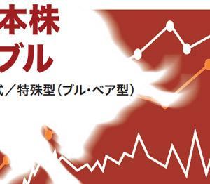 日経平均4.3倍の値動き!楽天日本株4.3倍ブルの評価・解説