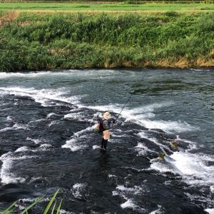 大野川にて、たまには 新規開拓を