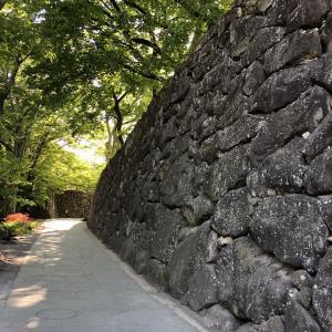 【夢中図書館】城ぶら「小諸城」!センゴクの夢の跡、懐古園をぶら歩き