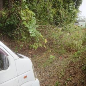 3日連続の雨降りで、稲刈りができない・・・。稲刈りの進捗率60%