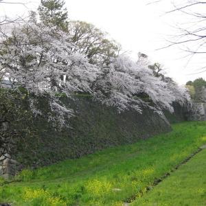 名城公園3つの蜜