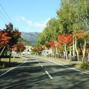 秋の三国峠サイクリング