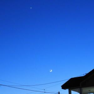 素敵な月でした!