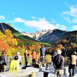 十勝岳温泉辺りの紅葉 今が盛りのようです
