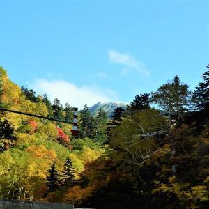 十勝岳連峰 紅葉真っ盛り