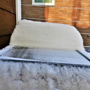 雪かきしました! まだ降りたいんだって +気になる記事