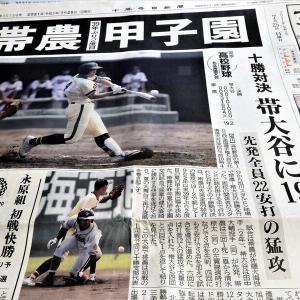 スポーツ観戦三昧の一日 野球にオリンピック