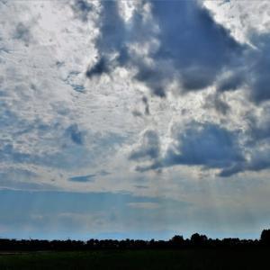 空と雲 今日の天気が魅せてくれました