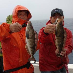釣行再開 浦島釣行