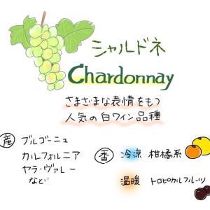 [ブドウの品種]シャルドネ