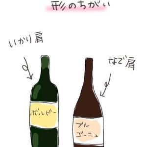 ボトルの形