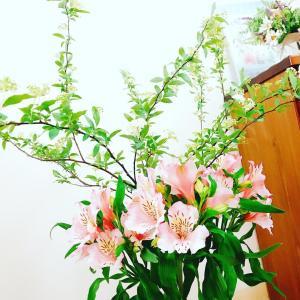 お花パワー