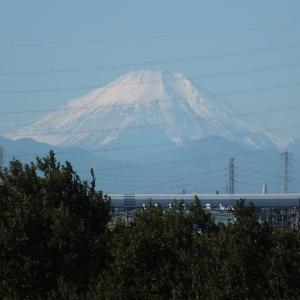 松戸・野田・関宿自転車歩行者専用道路の「海から26km」辺りから富士山を見る