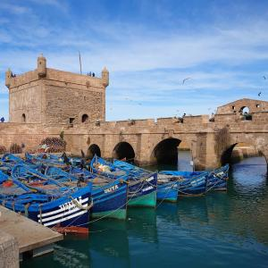 モロッコの港町エッサウィラで魚介類食べてハマムに行ってを永遠繰り返す男