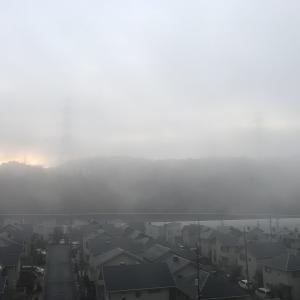 昨晩(1月27日)は風雨が強く大変でした。