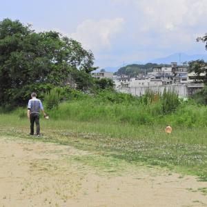 ラム 久々の紀ノ川散歩