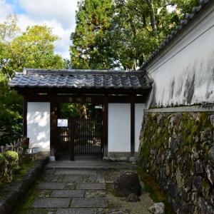 """奈良をゆっくり歩く 2"""" 吉城園 散策 """" @ 奈良市登大路60-1"""