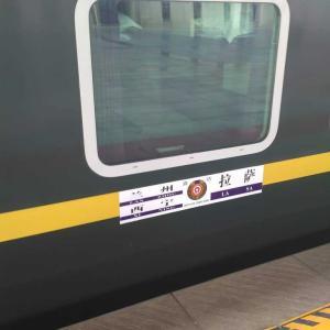 チベット鉄道移動 ラサー西寧 乗ってみた感想 6月乗車記