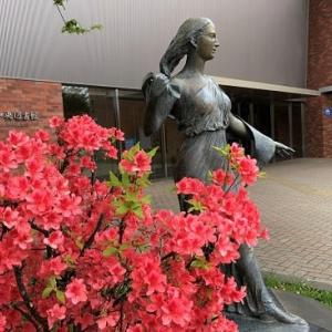 """休館中の中央図書館前に""""夏告げる花""""咲く..."""