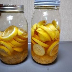 レモン酢作りました
