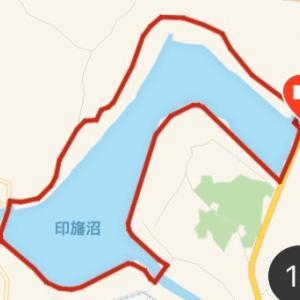 ぼっち錬 in  印旛沼1周 ラン&バイク