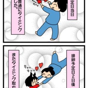 妊活再開4周期目③
