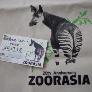 動物園でも年パサー