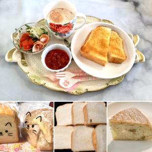 朝食が美味し過ぎ!