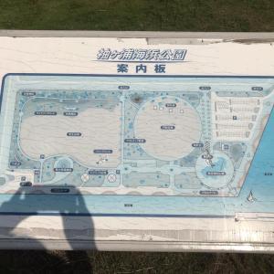 袖ヶ浦海浜公園