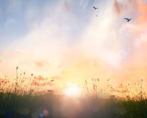 【今夜20時に配信】潜在意識覚醒における1:9の法則