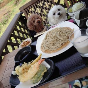 信州の旅♪ お蕎麦 & テイクアウト♪