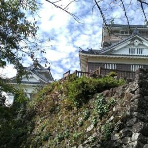 ロコ、続日本100名城攻城~その35「 越前大野城」(福井県大野市)を行く