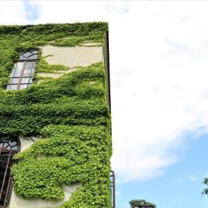 緑の蔦のグラデーションに包まれる「旧石井県令邸の建物」は盛岡の財産の一つ