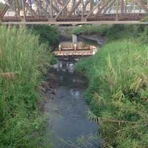 川の水は……