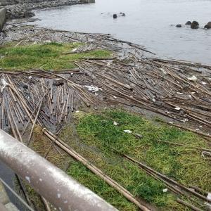 東京湾ゴミのやま