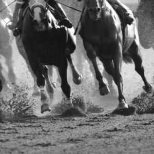チャンピオンズC(G1)馬連の選択肢は3つ!
