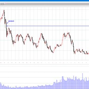 TOPIX 2100ポイント超え 1990年8月以来 月足チャート