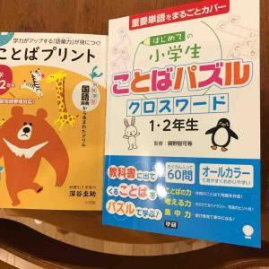 国語の勉強方法の模索(2)