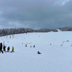 息子のスキー初体験と娘の初雪遊び