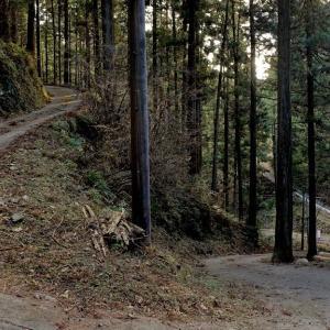 知る人ぞ知る飯能のエモい林道「高畑線」