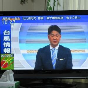 台風17号接近中でしゅミャミャ🐈防災意識だニャ😹