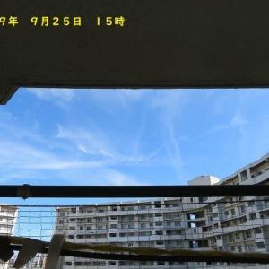 大分県「宇佐海軍航空隊跡」半地下コンクリート造建物③&2ニャン!ソファーの上で。。。