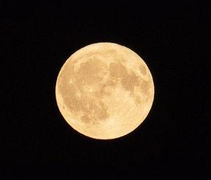 28日はさそり座の新月ですよ~~~