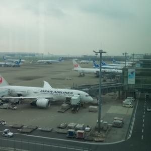 JAL 羽田~金浦とソウル発券の金浦~シンガポール搭乗でJGP到達