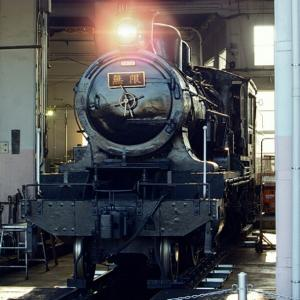 無限列車と紅葉ポタ