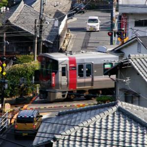 RedWing-227系 / 八幡さんから俯瞰写真